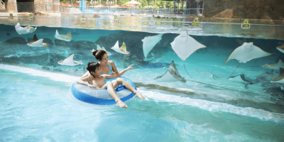 dventure Cove Waterpark 1 Daypass by muslimcuti