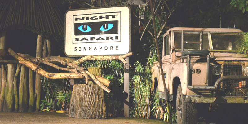 Singapore Night Safari Entrance ticket by muslimcuti
