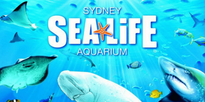 Australia Sydney Sea Life Aquarium ticket by muslimcuti