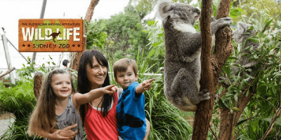 Australia Wild Life Sydney Zoo Entrance Ticket by muslimcuti