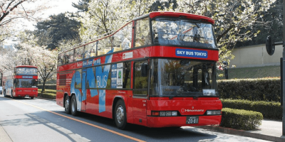 Tokyo Sky Hop-on and Hop-off Bus 24Hours Pass by muslimcuti