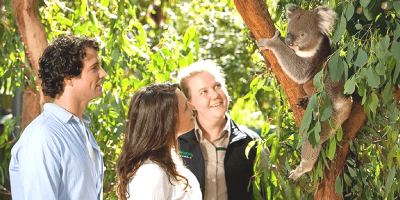 Melbourne Healesville Sanctuary ticket by muslimcuti