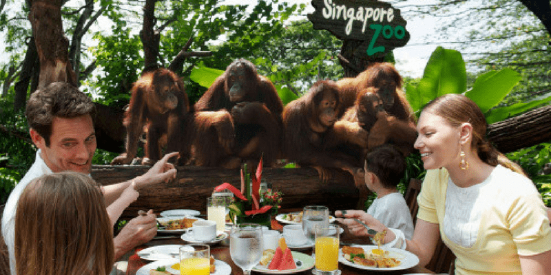 Singapore Zoo Entrance ticket by muslimcuti